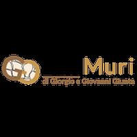 Logo EdilMuri, Realizzazione di Muri a Secco